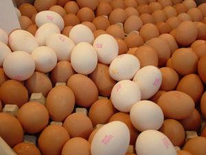 """Uova e polli """"colorati"""" con cantaxantina"""