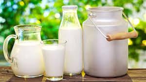 latte e contenitori